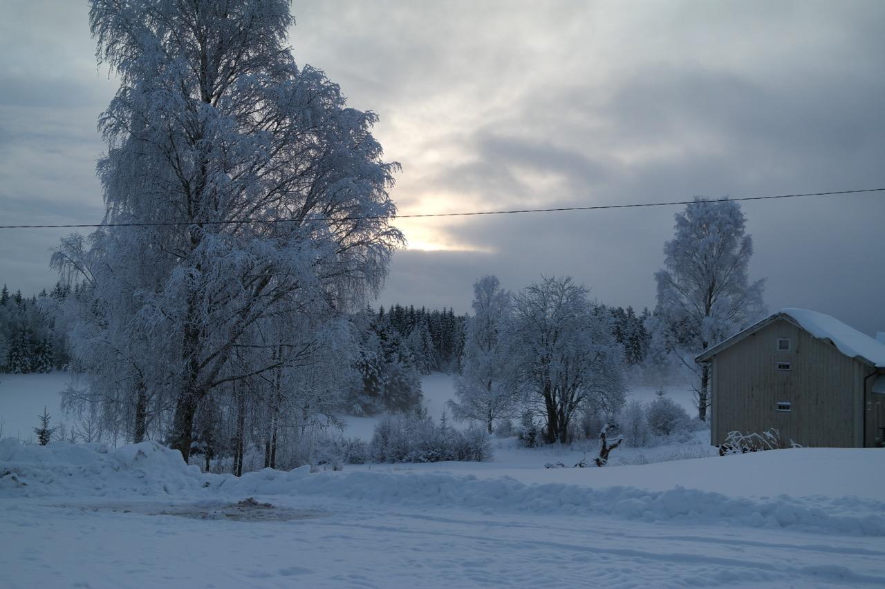 Skjeggenes gård i vinterdrakt