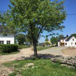 Det graves på Skjeggenes med Historiske Hus